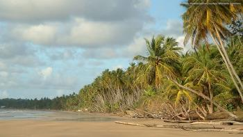 Trinidad and Tobago beach