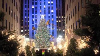 Rockefeller Center Christmas tree, From shade to shelter, Habitat for Humanity