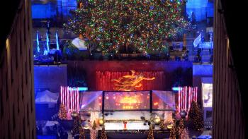 2016 Rockefeller Christmas Tree