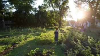 Community garden, the future of neighborhood revitalization