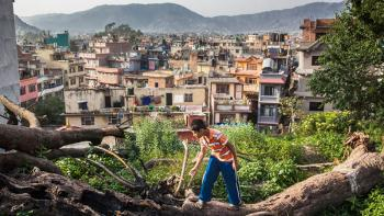 Photo: a boy balancing on a tree, slum area in the background