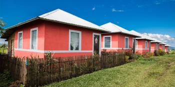 Row of pink Habitat houses in the Philippines