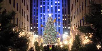 Rockefeller Center Christmas tree video, From shade to shelter, Habitat for Humanity